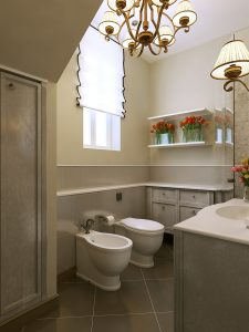 Toilet styles and features