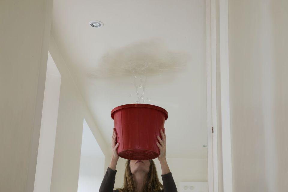 rook leaks melbourne