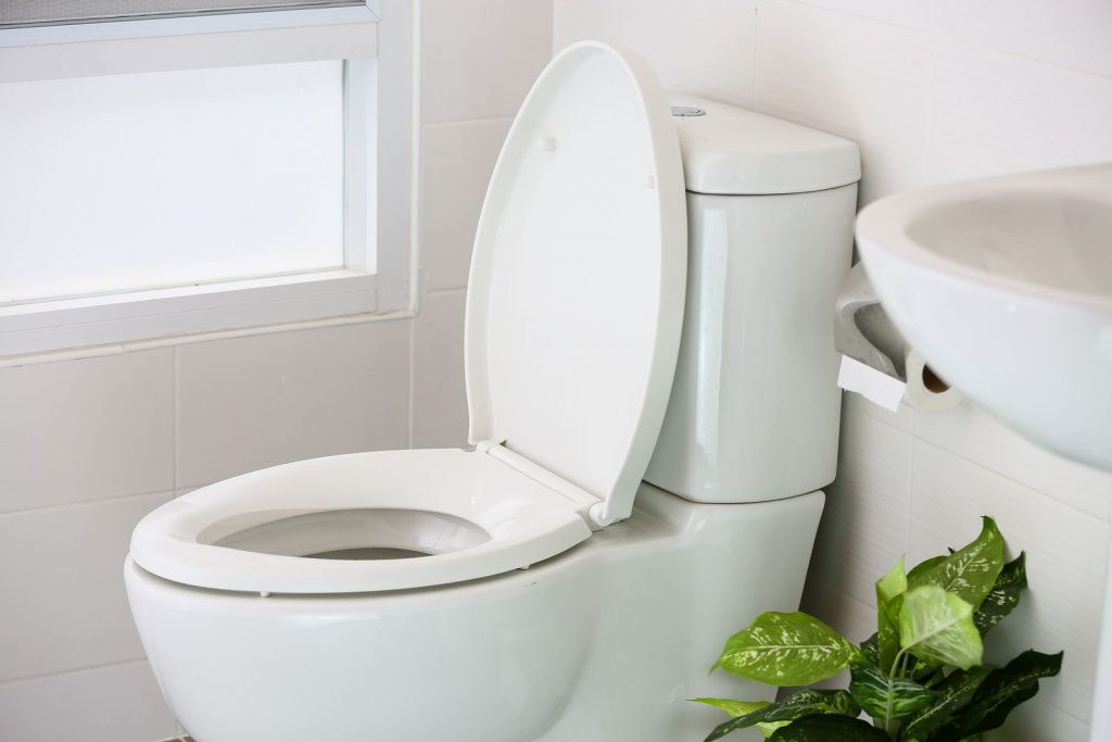 What happens when you flush the toilet? A professional